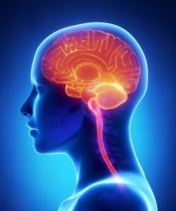 Bill On Traumatic Brain Injury Treatment Passed By Senate